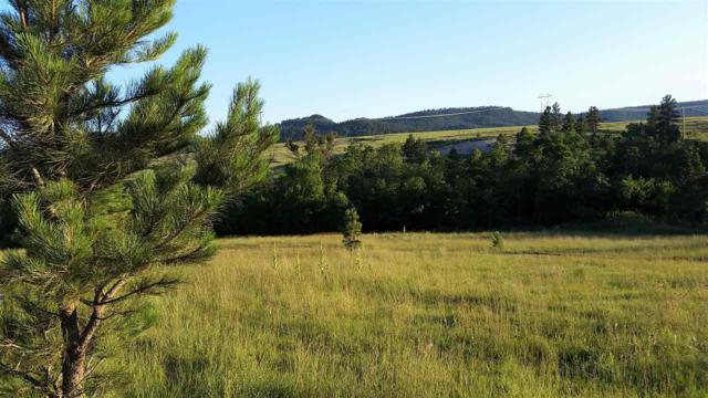 Parcel 1 B Whitetail Road, Hot Springs, SD 57747 (MLS #58227) :: Christians Team Real Estate, Inc.