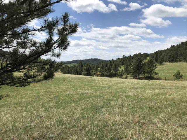 tbd Eagles Nest Drive, Fairburn, SD 57738 (MLS #58238) :: Christians Team Real Estate, Inc.