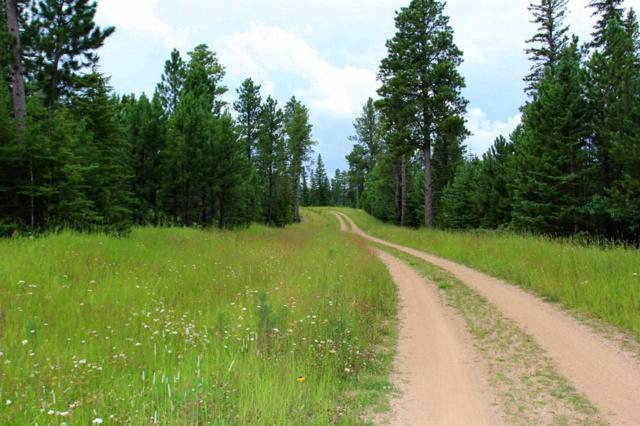 Lot 2 Gumpy Ridge, Lead, SD 57754 (MLS #58270) :: Christians Team Real Estate, Inc.