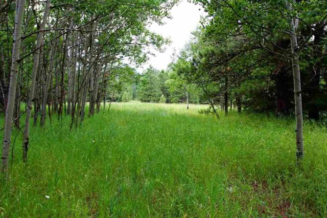 Lot 4 Gumpy Ridge, Lead, SD 57754 (MLS #58271) :: Christians Team Real Estate, Inc.