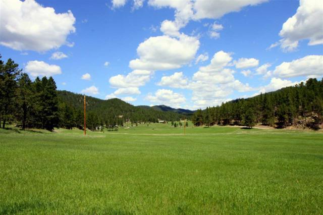 TBD Beaver Creek Road, Custer, SD 57730 (MLS #58284) :: Christians Team Real Estate, Inc.