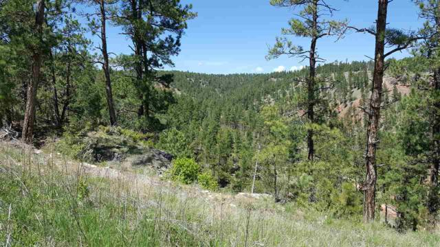 TBD Dana, Hot Springs, SD 57747 (MLS #58305) :: Christians Team Real Estate, Inc.
