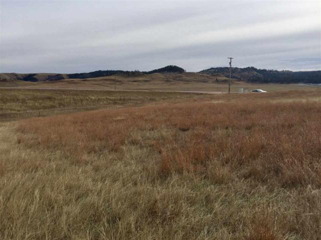 Tract 18 Battle Mtn Prkw/Hwy 385 S, Hot Springs, SD 57747 (MLS #58316) :: Christians Team Real Estate, Inc.