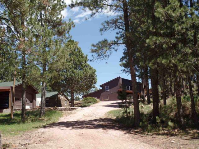 11820 Custer Limestone Road, Custer, SD 57730 (MLS #58342) :: Christians Team Real Estate, Inc.