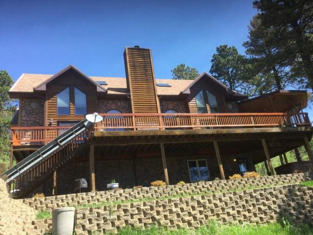 11809 Whale Road, Deadood, SD 57732 (MLS #58369) :: Christians Team Real Estate, Inc.