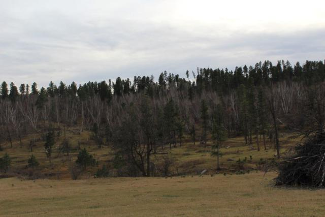 9 miles down Farrall Road, Beulah, WY 82712 (MLS #58411) :: Christians Team Real Estate, Inc.