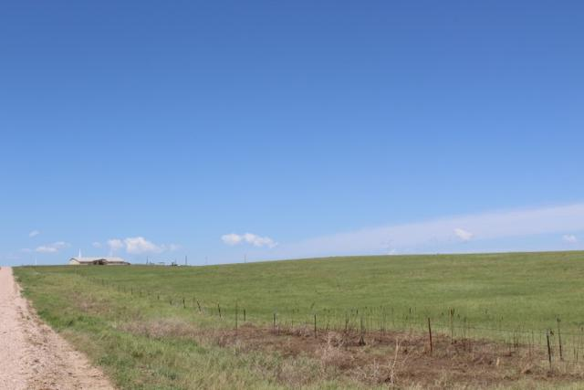 TBD Sunny Brook Road, Smithwick, SD 57782 (MLS #58442) :: Christians Team Real Estate, Inc.