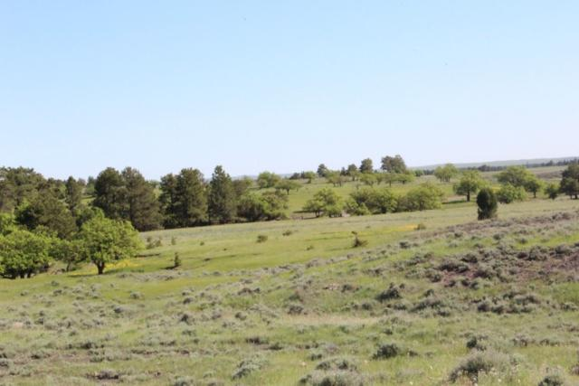 Kilpatrick Road, Colony, WY 82710 (MLS #58450) :: Christians Team Real Estate, Inc.