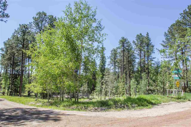 TBD Whitetail Drive, Lead, SD 57754 (MLS #58463) :: Christians Team Real Estate, Inc.