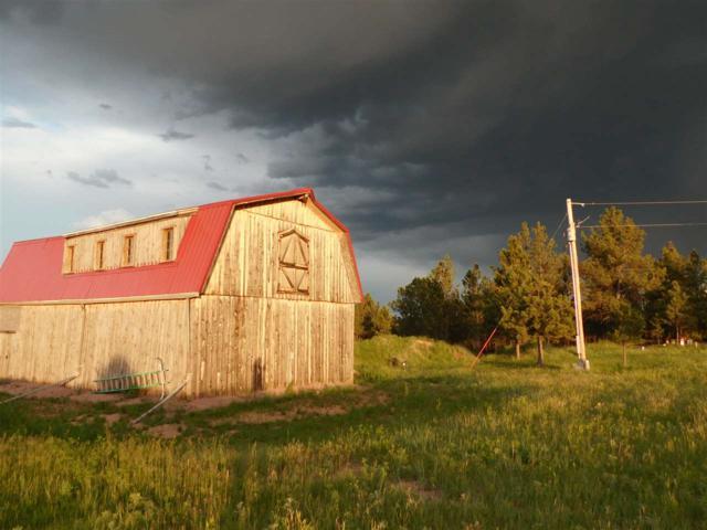 25552 Old Cabin Road, Edgemont (Mailing address), SD 57735 (MLS #58478) :: Christians Team Real Estate, Inc.