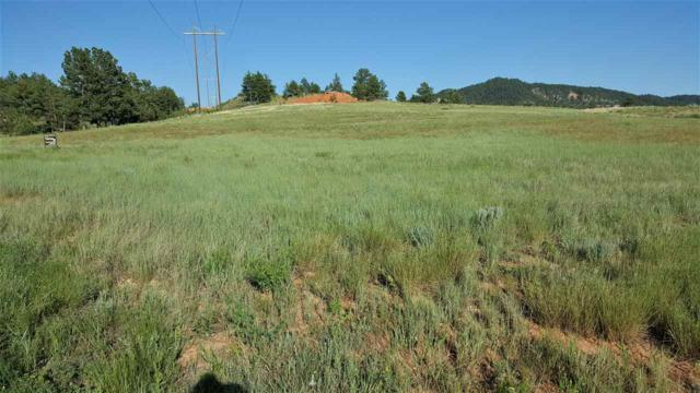 Lot 13 Spirit Canyon Road, Hot Springs, SD 57747 (MLS #58524) :: Christians Team Real Estate, Inc.