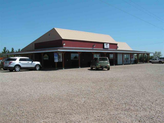 17858 Sd Hwy 20, Bison, SD 57620 (MLS #58584) :: Christians Team Real Estate, Inc.