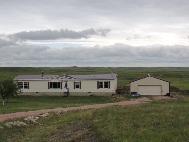 14043 Paha Sapa Drive, Hermosa, SD 57744 (MLS #58622) :: Christians Team Real Estate, Inc.