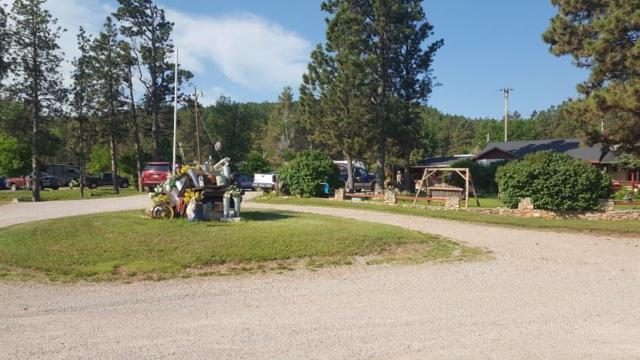 14189 Sturgis Road, Piedmont, SD 57769 (MLS #58646) :: Christians Team Real Estate, Inc.