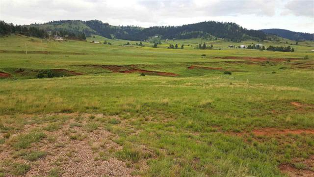 TBD Highway 385, Hot Springs, SD 57747 (MLS #58648) :: Christians Team Real Estate, Inc.