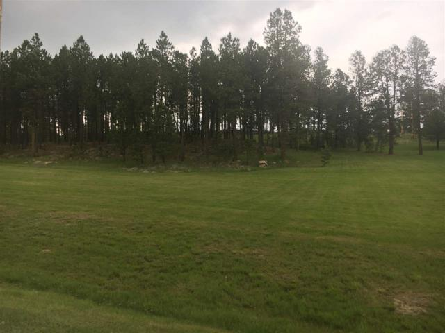 Fjerdingren, Custer, SD 57730 (MLS #58661) :: Christians Team Real Estate, Inc.