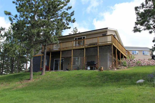 25151 Renegade Pass, Custer, SD 57730 (MLS #58727) :: Christians Team Real Estate, Inc.