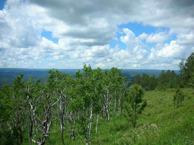 EMERY #4 Terry Peak Summit Road, Lead, SD 57754 (MLS #58728) :: Christians Team Real Estate, Inc.