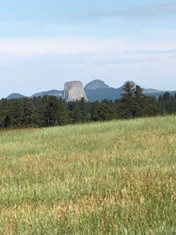 23 Rustic Cabin Trail, Devils Tower, WY 82714 (MLS #58776) :: Christians Team Real Estate, Inc.