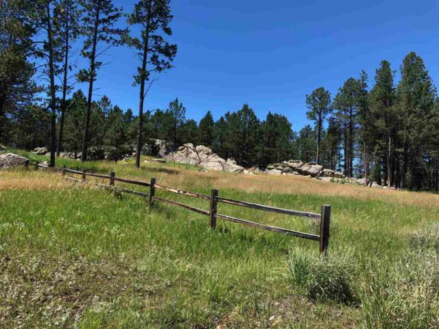 111 Hayloft Ct, Custer, SD 57730 (MLS #58787) :: Christians Team Real Estate, Inc.