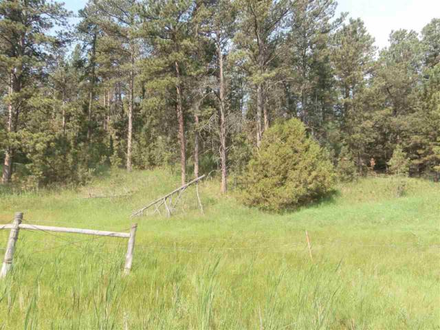 Lots 7,8,9 Black Hills Ranch Estates Road, Pringle, SD 57773 (MLS #58875) :: Christians Team Real Estate, Inc.