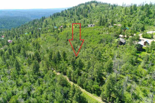 Lot 12 Turkey Trail, Lead, SD 57754 (MLS #58962) :: Dupont Real Estate Inc.
