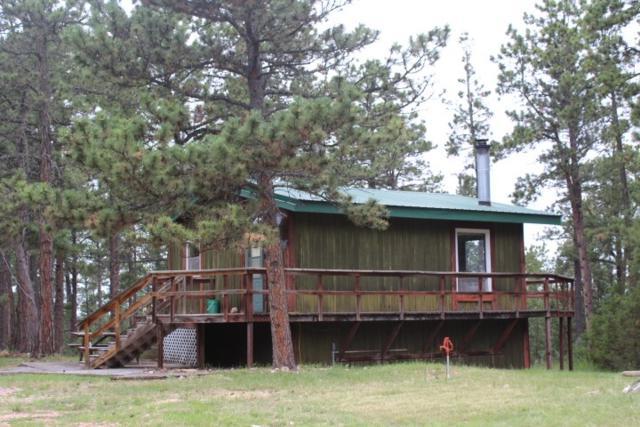 12017 Wolf Lane, Hot Springs, SD 57747 (MLS #58987) :: Christians Team Real Estate, Inc.