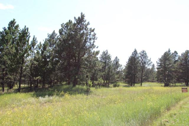 Tract 3 Address Not Published, Custer, SD 57730 (MLS #58988) :: VIP Properties