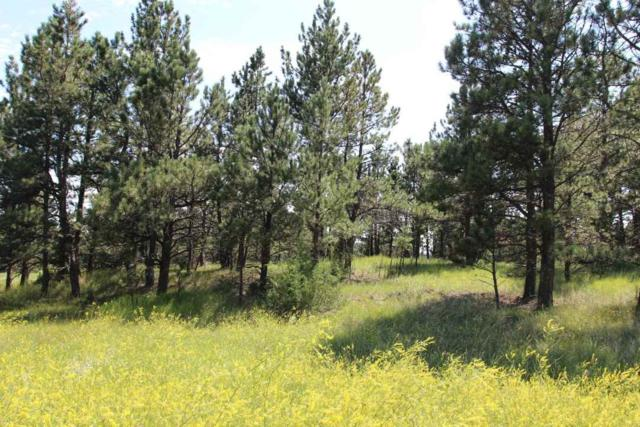Tract 4 Lone Elk Subd I, Custer County, SD 57730 (MLS #58989) :: Christians Team Real Estate, Inc.
