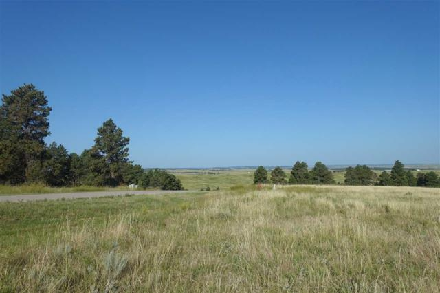 TBD Hat Ranch Drive, Belle Fourche, SD 57717 (MLS #59063) :: Christians Team Real Estate, Inc.