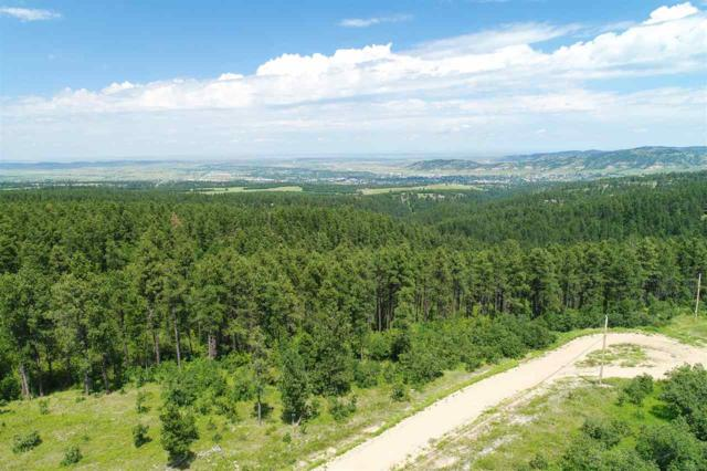 Tract 41 Aster Road, Spearfish, SD 57783 (MLS #59079) :: Christians Team Real Estate, Inc.