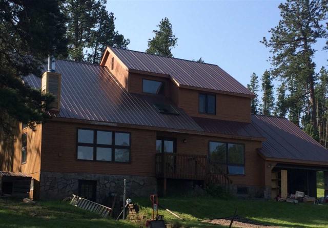 24025 Twin Rocks Road, Hill City, SD 57745 (MLS #59135) :: Christians Team Real Estate, Inc.