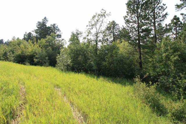 Tract 30A Pasque Loop, Spearfish, SD 57783 (MLS #59156) :: Christians Team Real Estate, Inc.