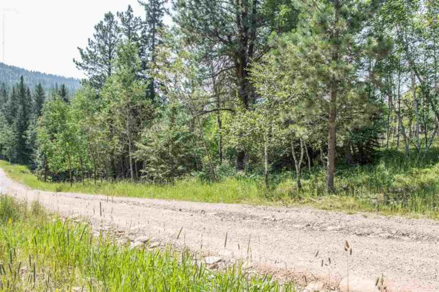 Lot 8 Antelope Trail, Lead, SD 57754 (MLS #59165) :: Christians Team Real Estate, Inc.