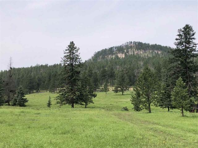 TBD Castle Creek Road, Hill City, SD 57745 (MLS #59168) :: Christians Team Real Estate, Inc.
