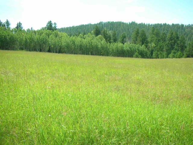 LOT 11 Aspen Lookout Loop, Lead, SD 57754 (MLS #59178) :: Christians Team Real Estate, Inc.