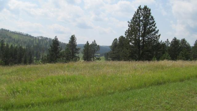 TBD Prospect Rd., Hill City, SD 57745 (MLS #59205) :: Christians Team Real Estate, Inc.