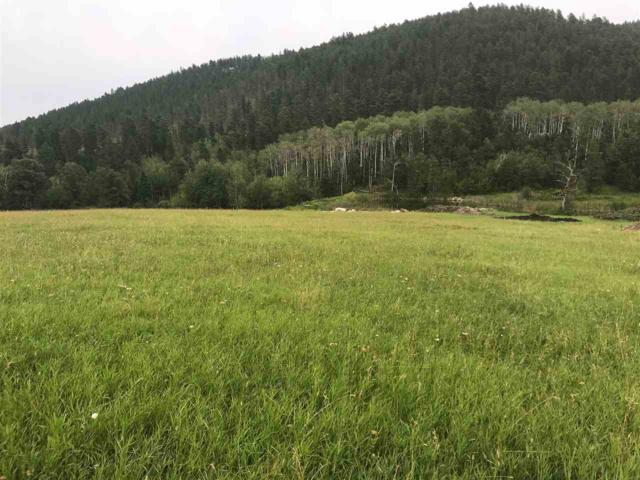 Lot 2A Elk View Loop, Deadwood, SD 57732 (MLS #59248) :: Christians Team Real Estate, Inc.