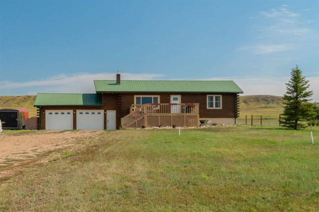 10832 Big Bear Lane, Belle Fourche, SD 57717 (MLS #59260) :: Christians Team Real Estate, Inc.