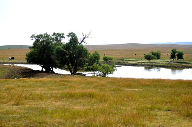 21017 Elk Vale Rd, Sturgis, SD 57785 (MLS #59282) :: Christians Team Real Estate, Inc.