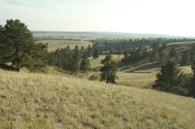 Rocky Ford, Hot Springs, SD 57747 (MLS #59313) :: Christians Team Real Estate, Inc.