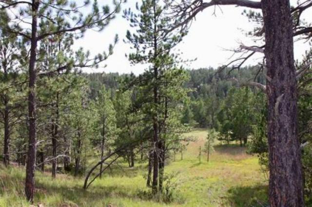Tract 43 Calamity Jane Drive, Pringle, SD 57773 (MLS #59332) :: Christians Team Real Estate, Inc.