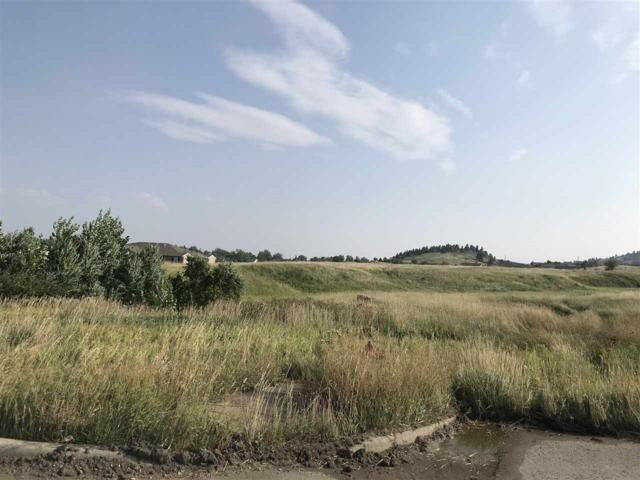 TBD Misty Woods Lane, Rapid City, SD 57701 (MLS #59339) :: Christians Team Real Estate, Inc.
