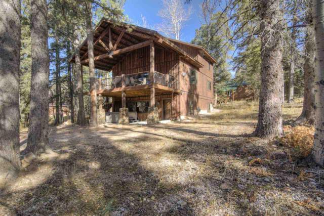 11036 Buffalo Trail, Lead, SD 57754 (MLS #59385) :: Christians Team Real Estate, Inc.
