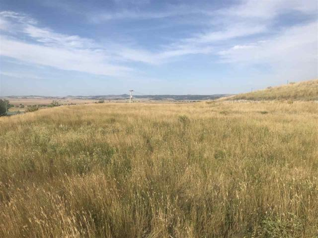 TBD Airport Drive, Edgemont, SD 57735 (MLS #59431) :: Christians Team Real Estate, Inc.