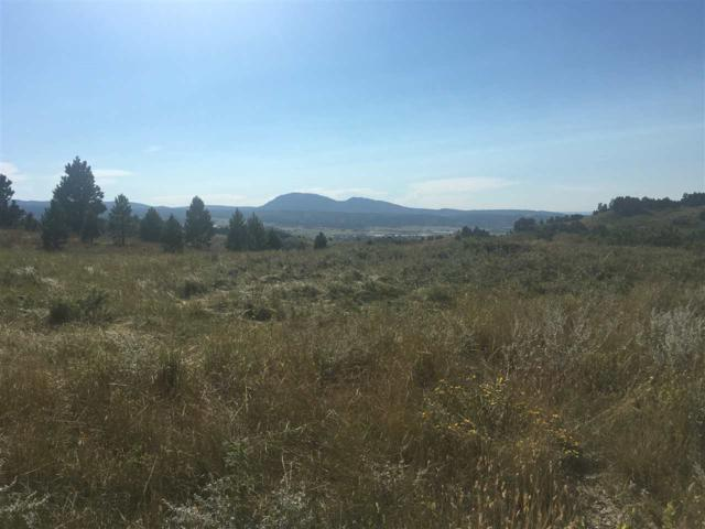 Lot 10C Lookout Vista Rd., Spearfish, SD 57783 (MLS #59447) :: Christians Team Real Estate, Inc.