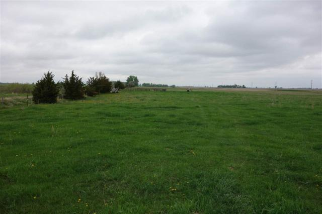 TBD 168th St, Revillo, SD 57259 (MLS #59458) :: Christians Team Real Estate, Inc.