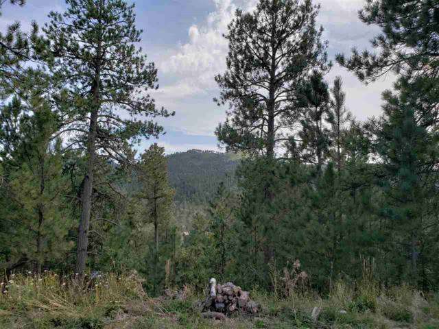 Lot 31 Pillar Peak II, Deadwood, SD 57732 (MLS #59464) :: Christians Team Real Estate, Inc.