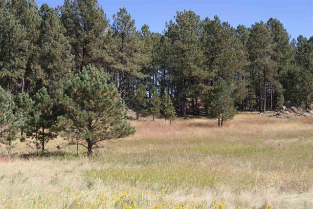 Tract 8 Last Stand Road, Custer, SD 57730 (MLS #59503) :: Christians Team Real Estate, Inc.