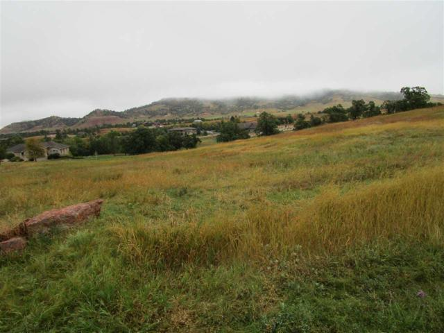 Lot 35 Woodlands Drive, Spearfish, SD 57783 (MLS #59561) :: Christians Team Real Estate, Inc.